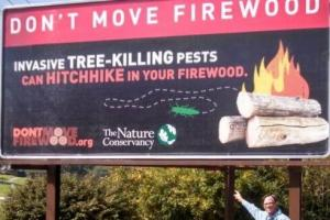 Camping season is here! Are you aware of firewood restrictions where you are camping?